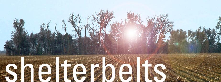 Shelterbelt Logo